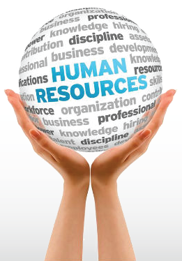 CHRS- Human Resources Analysis Georgia